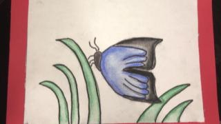 Mariposa con gises
